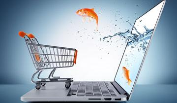 Polski e-handel na fali wznoszącej
